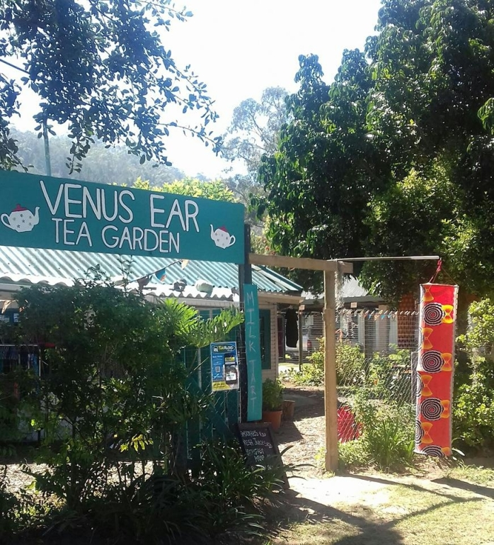 venus ear