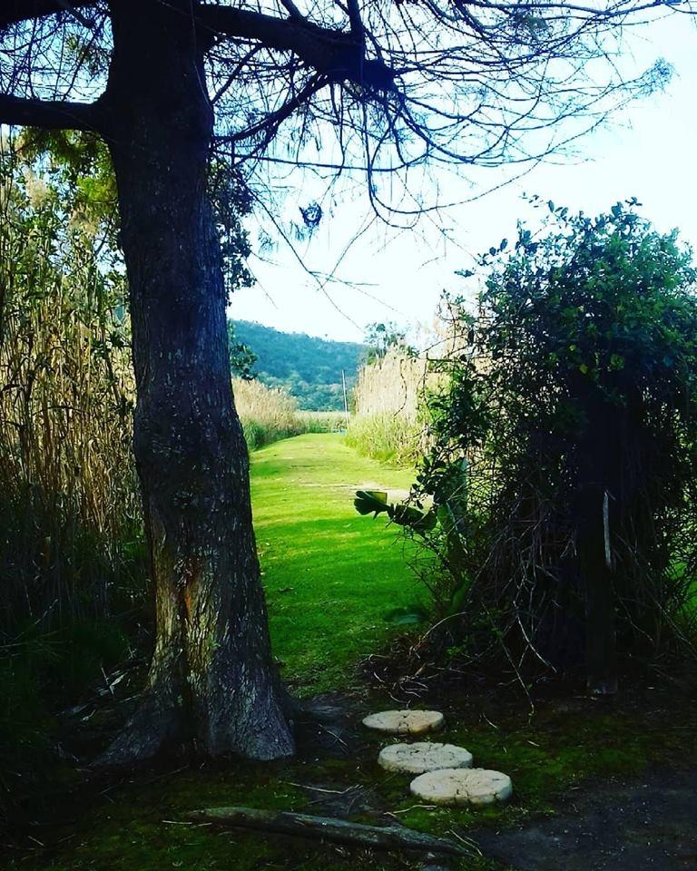 paths of greenery