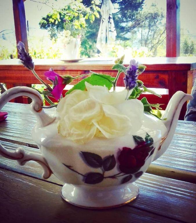 tea and sympathy ties that bind