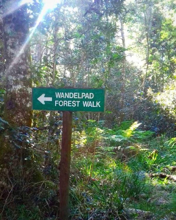 wandelpad