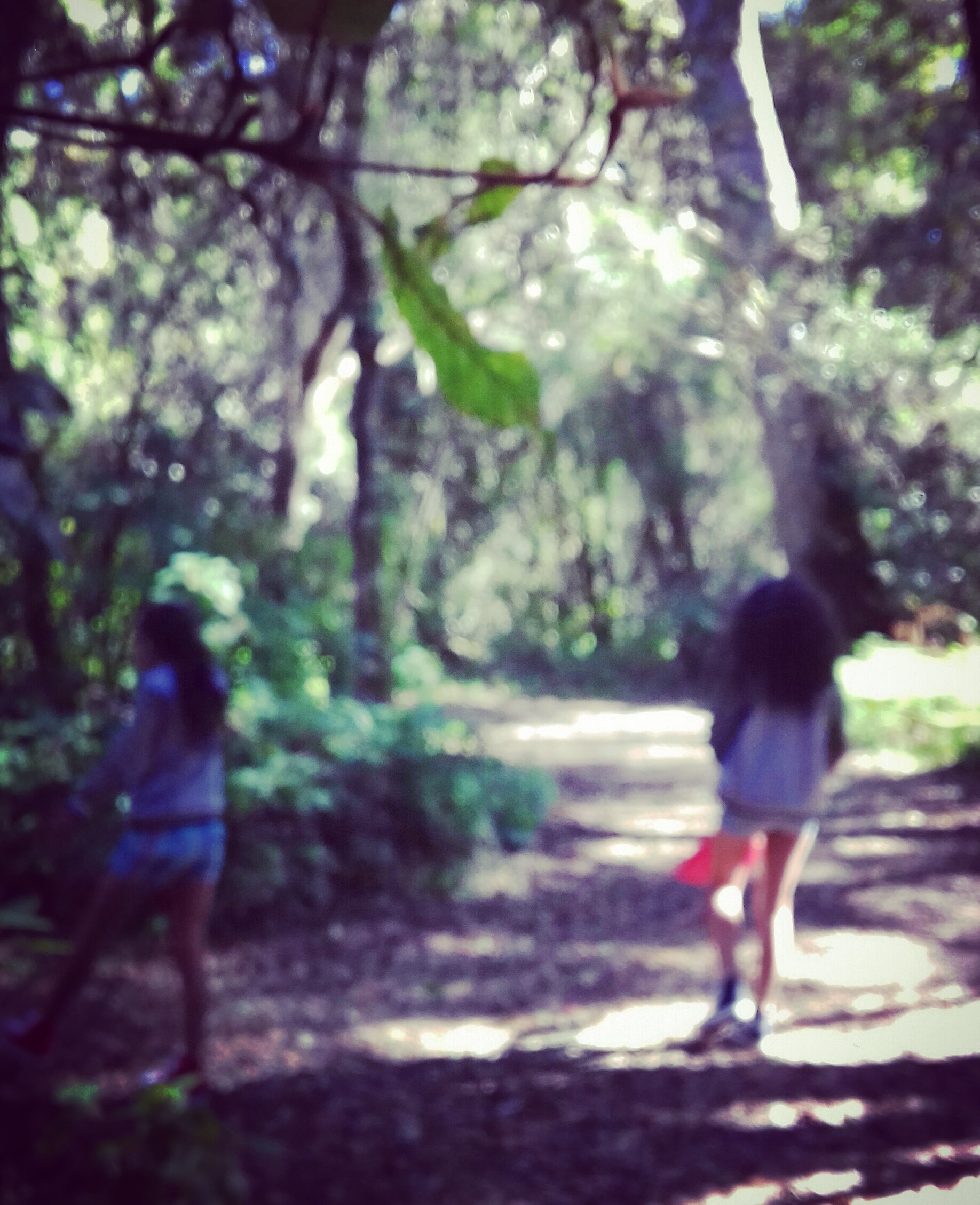 girls in forest